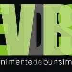logo EVDBS_black background